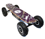 elektro skateboard: Rokitscience 800 Chainsaw